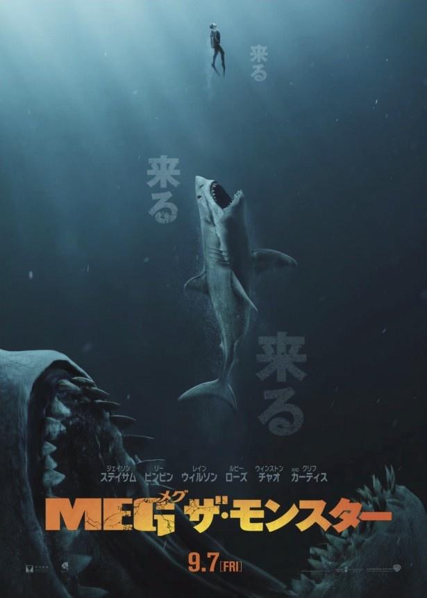 【写真を見る】来る…来る…来る…。めちゃめちゃデカいサメが来る!