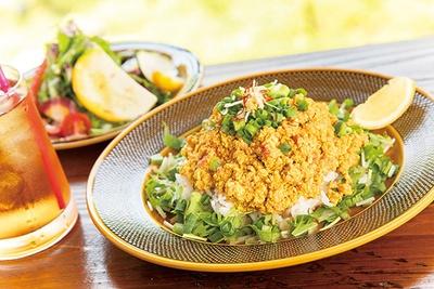 【写真を見る】鶏と豆腐の青葱キーマカレー(1,404円)。豆腐や青ネギ、水菜などが入りさわやか。サラダ・ドリンクセット