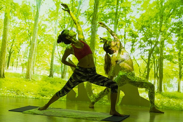 【写真を見る】「フォレスト」では森林の映像の中、大地と木々のエネルギーを感じられる