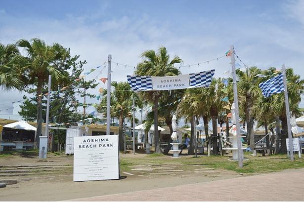 【写真を見る】おしゃれなビーチハウスが集結する「AOSHIMA BEACH PARK」