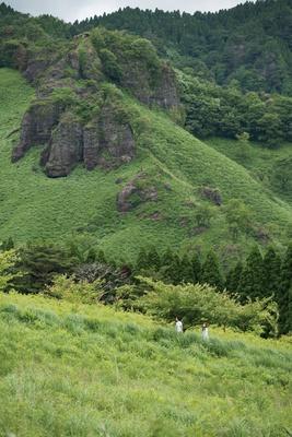プランにはキャンプマスターと阿蘇の森を散策する体験メニューがセットに