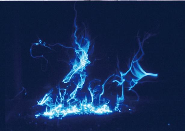 「ウミホタルの発光実験」は11:15~、13:15~、15:15~の1日3回