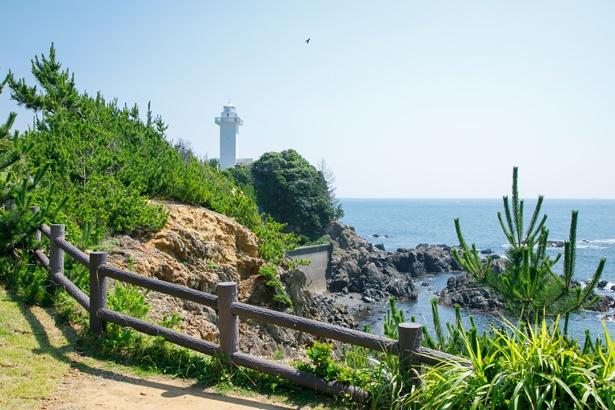 駐車場からの遊歩道を歩くと、すぐに灯台と海が見えてくる。周囲からはカモメの鳴き声が聞こえ、まるで南国のような雰囲気!