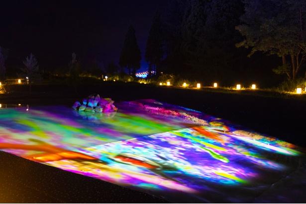 色鮮やかな魚が水面に投影される