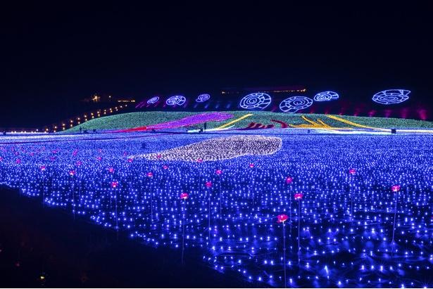2万6100平方メートルの広大な敷地が美しい光に包まれる