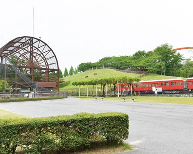 試験運転に使われた名鉄電車が保存されていて、中に入ることもできる。牧場の緑と赤い電車のコントラストが美しい(鞍ケ池公園)