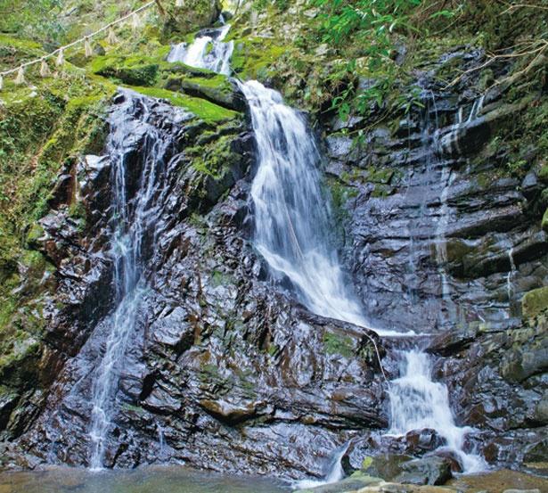 犬鳴山の自然に囲まれた神秘的な名瀑/行者の滝