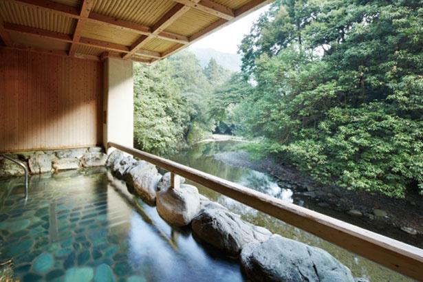 新緑が眺められる露天風呂/犬鳴山温泉不動口館