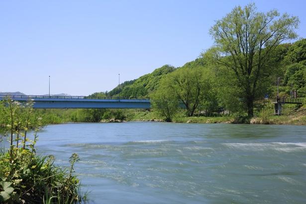 アユの北限であり、鮭が遡上することでも有名な余市川