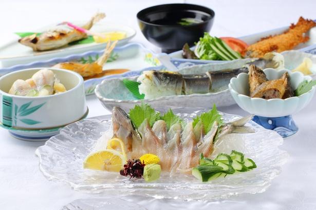 お造りをはじめ、甘露煮やぬた、田楽などのバラエティ豊かな全7品のアユ料理が味わえる「鮎フルコース」(5400円)