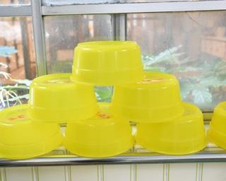 まるで昔にタイムスリップしたみたい!全国からファンが訪れる三重のレトロ銭湯