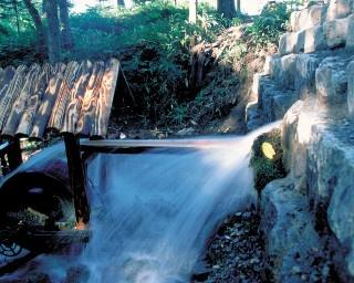 伏流水が勢いよく湧き出ている来運の水