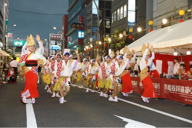 太鼓や鐘の音、踊り子の掛け声が響き渡る阿波踊りは、間近で見ると迫力満点