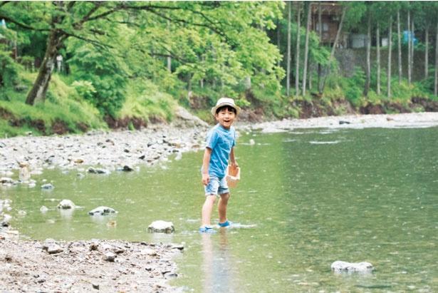 【写真を見る】京都丹波高原国定公園にも指定されている山間地域で、美しい自然が多く残る/花背リゾート 山村都市交流の森