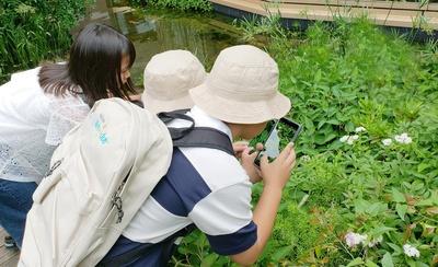緑豊かなウェスティン ガーデンでも撮影可能!