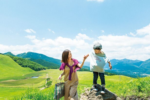 【写真をみる】半分ほど登った所でふと見下ろすと高原全体を眺めることができる/曽爾高原
