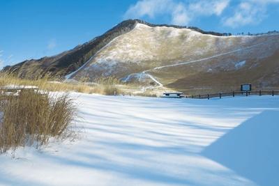 冬になると真っ白なじゅうたんに大変身/曽爾高原