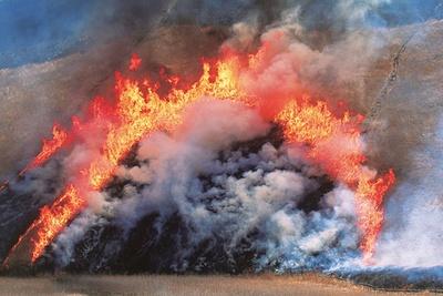 毎年3月中旬に行われるススキの山焼き/曽爾高原