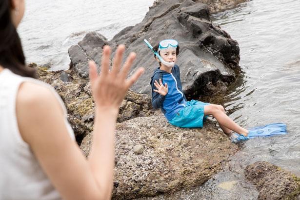 海に潜れば熱帯魚が見られることも/九龍島