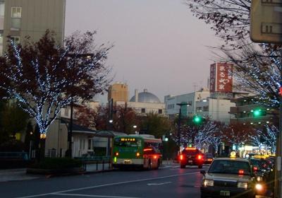 駅前から元渕江公園に続く街路樹も、光をまとう