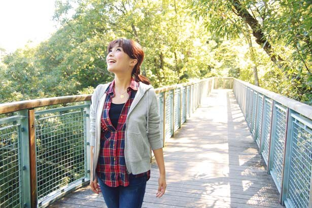 高さ16m、長さ60mの散歩道「キャノピーウォーク」/一庫公園 自然観察の森
