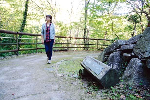 道は整備されていて、なだらかな道が続く/一庫公園 自然観察の森