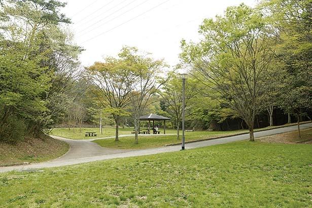 河内の里 北門を出るとすぐに「一の谷芝生広場」が/錦織公園