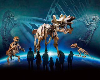 哺乳類3億年の歴史をひも解く!群馬県立自然史博物館で「化石動物園」開催中