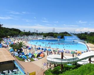 豊富なプールに大満足!東武動物公園に「東武スーパープール」オープン中