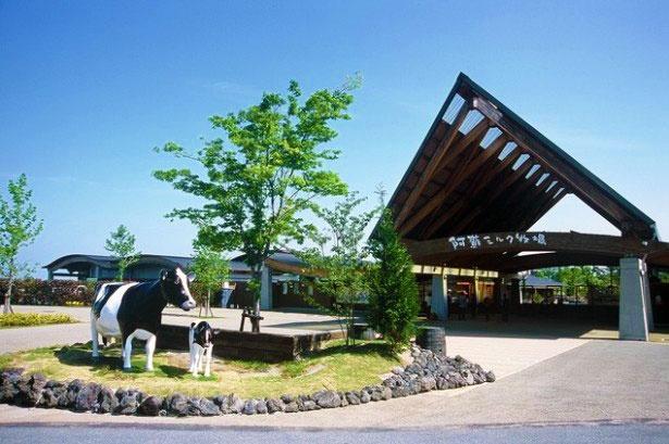 熊本平野が一望できる草原にある「阿蘇ミルク牧場」