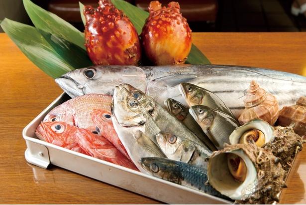 毎日市場で仕入れる鮮度抜群の魚介類