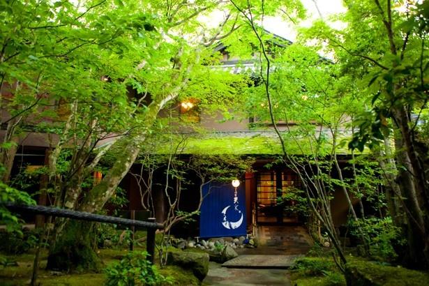 山荘天水 / 木々に囲まれた山間にひっそりと建つ天瀬温泉の旅館