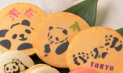 【写真を見る】パンダに癒される!赤坂柿山 松坂屋上野店「たまご煎餅」(パンダ・6枚入り810円)