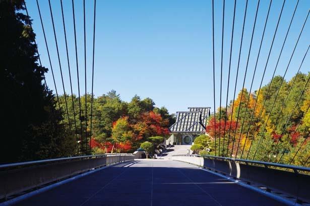 【写真を見る】美術館棟は伝統的な入母屋造がモチーフ。橋から望む構図は絶好の撮影ポイントだ
