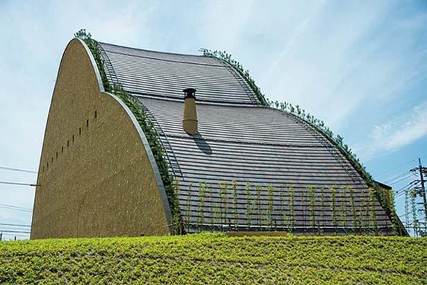 面にはルーフタイルを使用。建物の輪郭をマツの木が縁どる個性的なデザインだ