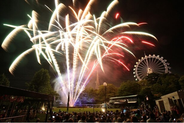 到津の森公園「星降る花火ファンタジー」 / 音楽と花火のコラボが魅力