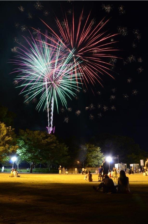 阿蘇市民復興まつり / 自然豊かな阿蘇の夜空を花火が彩る