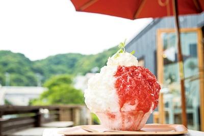 赤と白のコントラストが写真映えする「ひなたカフェ」の「イチゴヨーグルト」(1,100円/天然氷 ※純氷は950円)。練乳ヨーグルトと濃厚なイチゴソースで