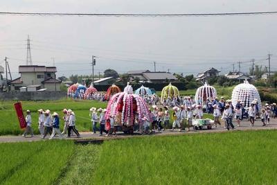 青田の中を色鮮やかな花傘鉾が巡行