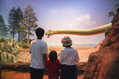長い首が特徴のマメンチサウルス。皮膚の色、質感などもリアルに再現されている