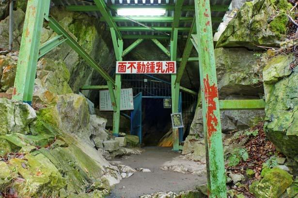 ここから鍾乳洞探検がスタート。入口に立っているだけでも涼しい/面不動鍾乳洞