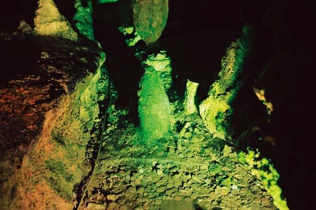 【獅子の窟】連中から鍾乳石、下から石筍が伸びる。数千年後にはつながり、柱になる/面不動鍾乳洞