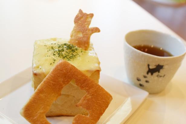 猫カフェでも美味しい食事を提供したい、との想いでパンを生地から発酵させてお店で作っている