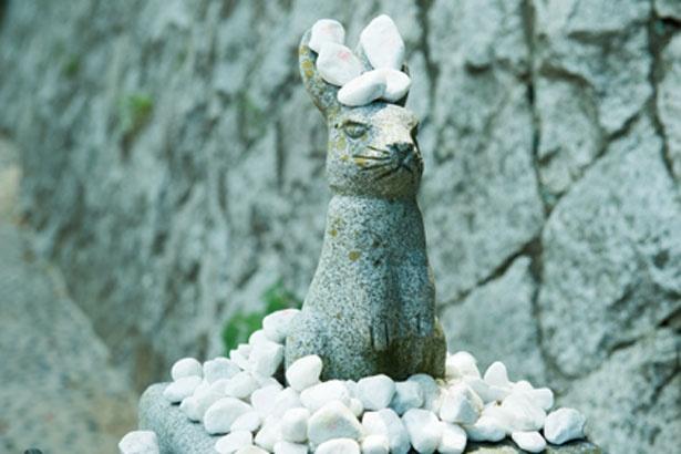 神話の舞台になった白兎海岸の絶景が広がる/白兎神社