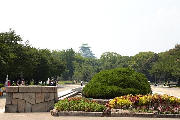 年間1200万人もの人が来場する大阪城公園