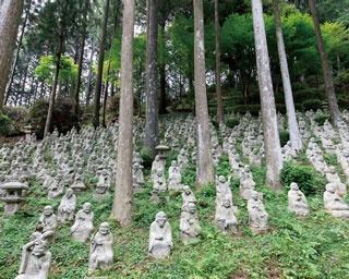 鎌倉時代に栄えた真言宗の道場「雷山千如寺大悲王院 (らいざんせんにょじだいひおういん)」