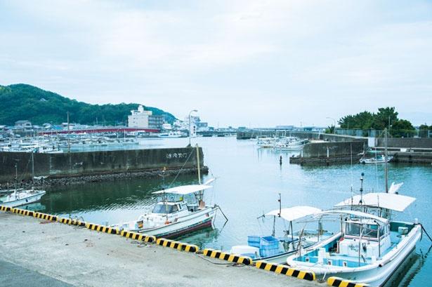 【写真を見る】商業港として栄えた漁村/和歌山県加太