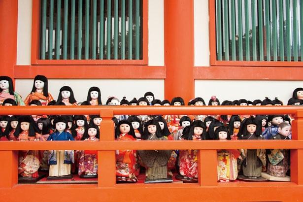 整然と並べられた約2万体もの人形たち/淡嶋神社