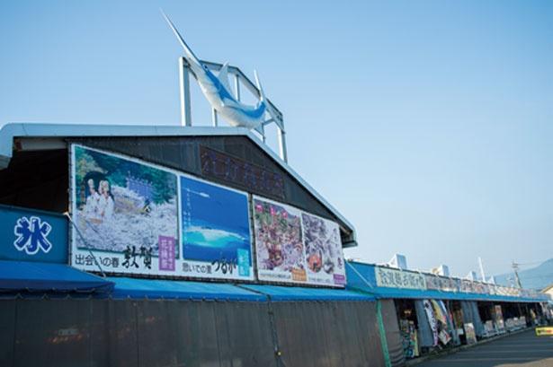 敦賀港とその周辺で捕れる新鮮な魚が買える/日本海さかな街