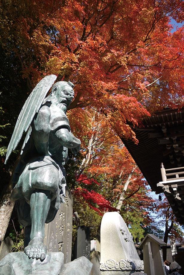 天狗伝説がある高尾山。高尾山薬王院にある、団扇を構えたお姿の大天狗と紅葉のコラボは必見